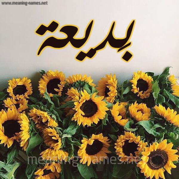 صورة اسم بَديعة BADIAH شكل 17 صوره دوار الشمس للإسم بخط رقعة