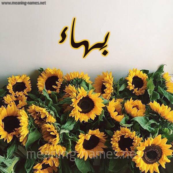 شكل 17 صوره دوار الشمس للإسم بخط رقعة صورة اسم بَهاء Bahaa