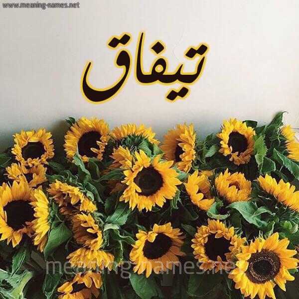 صورة اسم تيفاق Tyfaq شكل 17 صوره دوار الشمس للإسم بخط رقعة