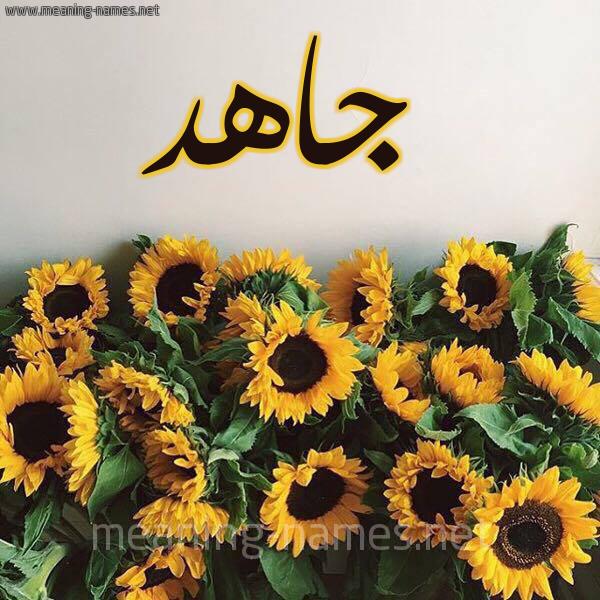 صورة اسم جاهد GAHD شكل 17 صوره دوار الشمس للإسم بخط رقعة