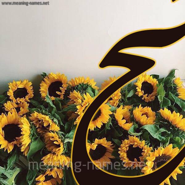 صورة اسم جح GH شكل 17 صوره دوار الشمس للإسم بخط رقعة