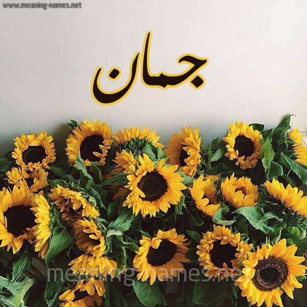 صورة اسم جمان Joman شكل 17 صوره دوار الشمس للإسم بخط رقعة