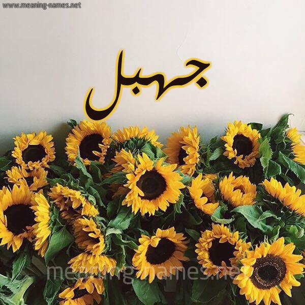 صورة اسم جهبل Jhbl شكل 17 صوره دوار الشمس للإسم بخط رقعة