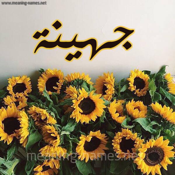 صورة اسم جهينة Johyna شكل 17 صوره دوار الشمس للإسم بخط رقعة