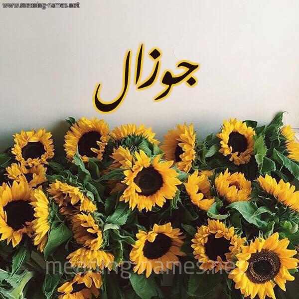 صورة اسم جوزال jawzal شكل 17 صوره دوار الشمس للإسم بخط رقعة
