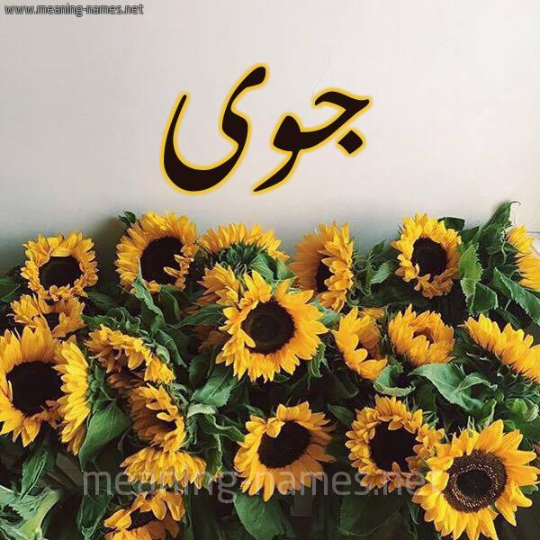 صورة اسم جوى GOA شكل 17 صوره دوار الشمس للإسم بخط رقعة