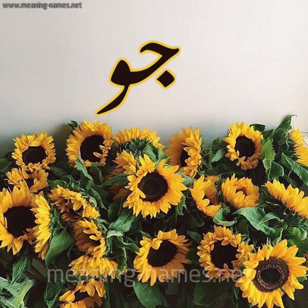 صورة اسم جو Jo شكل 17 صوره دوار الشمس للإسم بخط رقعة
