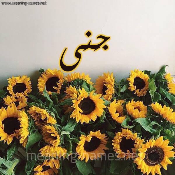 معنى اسم ج ن ى Ganaa قاموس الأسماء و المعاني