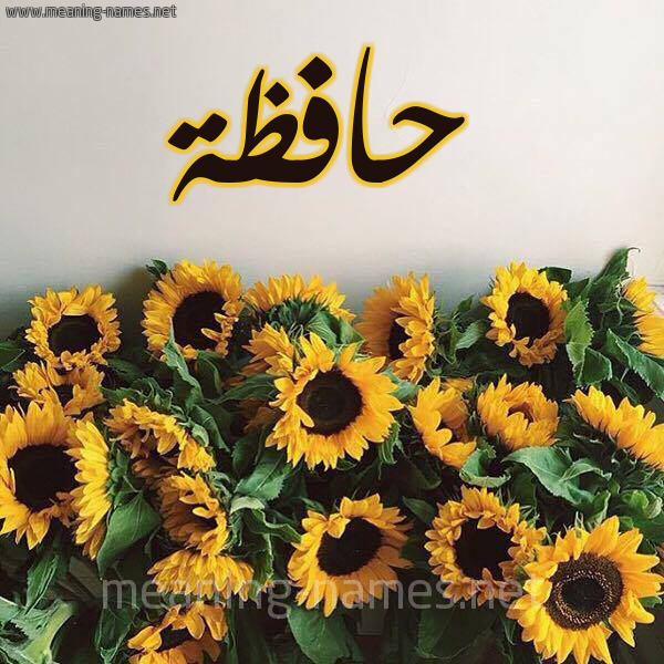 صورة اسم حافظة HAFZH شكل 17 صوره دوار الشمس للإسم بخط رقعة