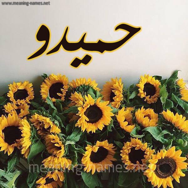 صورة اسم حميدو Hamido شكل 17 صوره دوار الشمس للإسم بخط رقعة