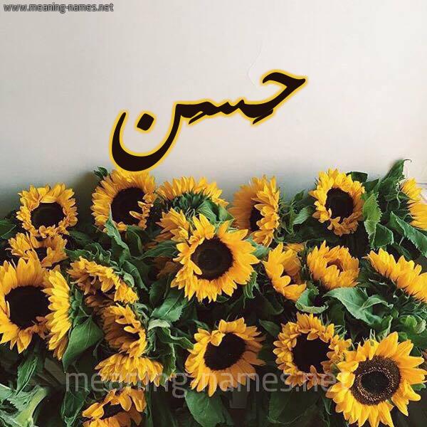 صورة اسم حَسَن HASAN شكل 17 صوره دوار الشمس للإسم بخط رقعة