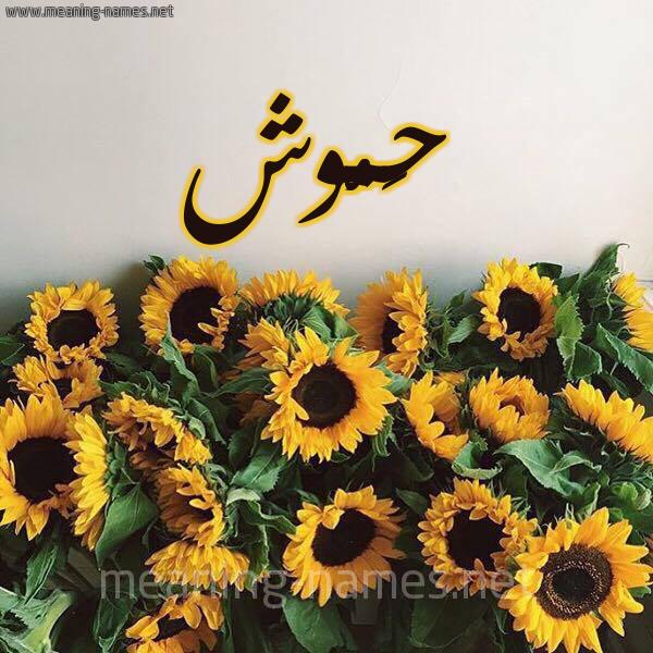صورة اسم حَمُّوش HAMOOSH شكل 17 صوره دوار الشمس للإسم بخط رقعة
