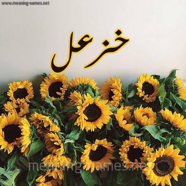 صورة اسم خزعل Khazl شكل 17 صوره دوار الشمس للإسم بخط رقعة