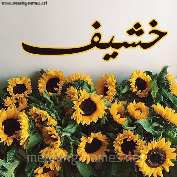 صورة اسم خشيف Khshyf شكل 17 صوره دوار الشمس للإسم بخط رقعة