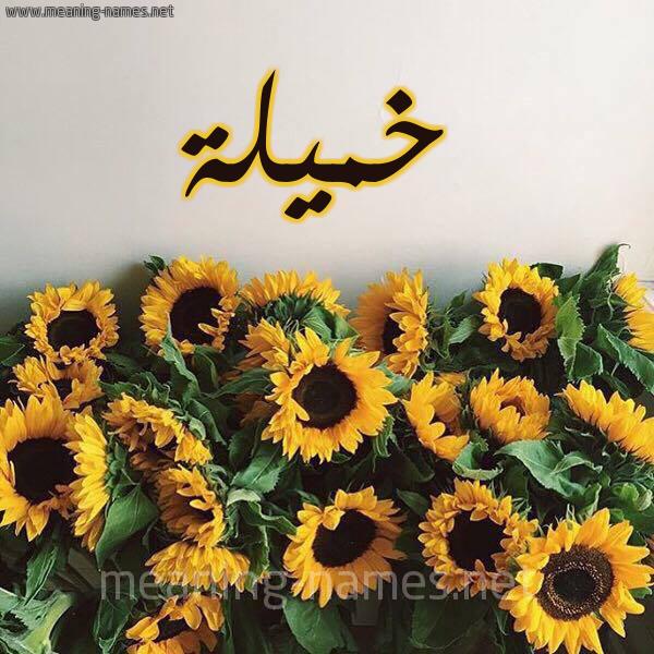 صورة اسم خميلة Khmylh شكل 17 صوره دوار الشمس للإسم بخط رقعة