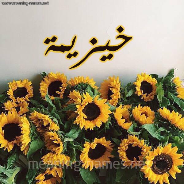 صورة اسم خيزيمة Khuzaimah شكل 17 صوره دوار الشمس للإسم بخط رقعة