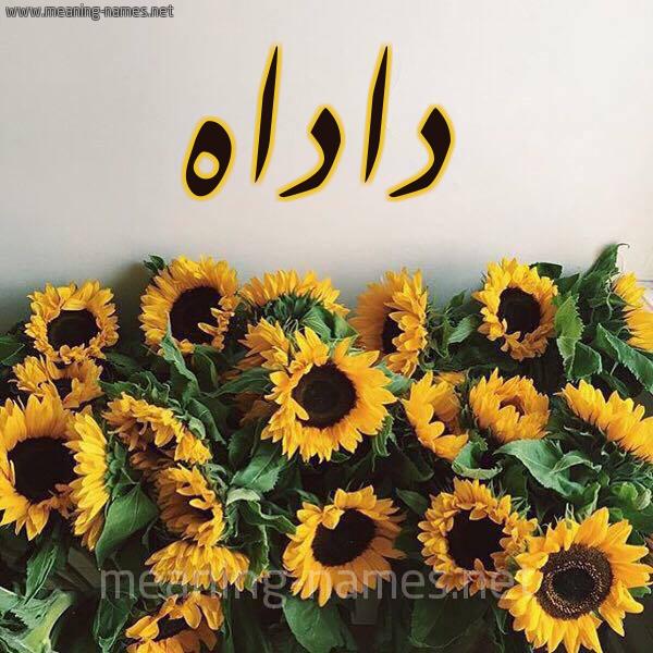 صورة اسم داداه DADDAH شكل 17 صوره دوار الشمس للإسم بخط رقعة