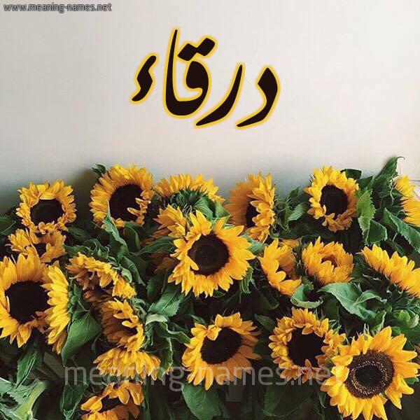صورة اسم درقاء Drqa'a شكل 17 صوره دوار الشمس للإسم بخط رقعة