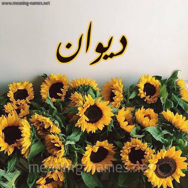 صورة اسم ديوان Dywan شكل 17 صوره دوار الشمس للإسم بخط رقعة