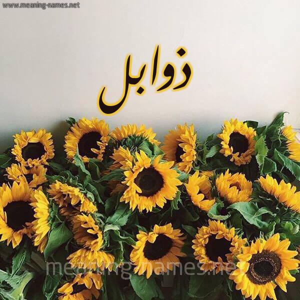 صورة اسم ذوابل Dhwabl شكل 17 صوره دوار الشمس للإسم بخط رقعة