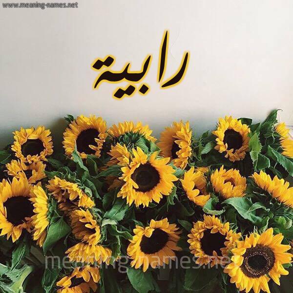 صورة اسم رابية Rabya شكل 17 صوره دوار الشمس للإسم بخط رقعة