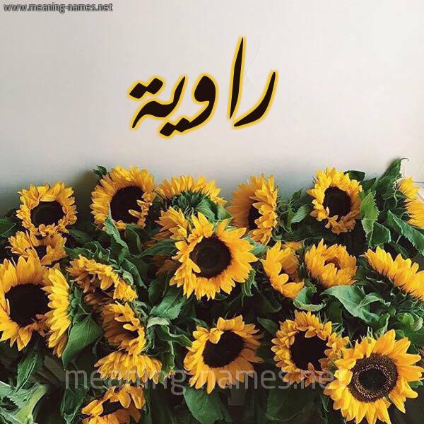 صورة اسم راوية Rawyh شكل 17 صوره دوار الشمس للإسم بخط رقعة
