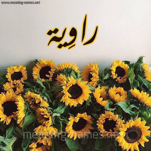 صورة اسم راوِية RAOEIH شكل 17 صوره دوار الشمس للإسم بخط رقعة