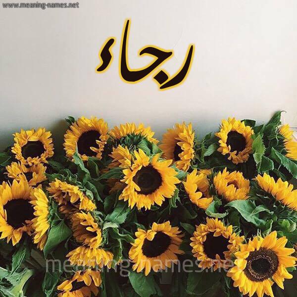 صورة اسم رجاء Rjaa شكل 17 صوره دوار الشمس للإسم بخط رقعة