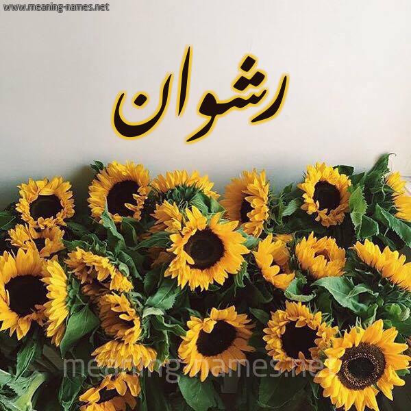 صورة اسم رشوان Rshoan شكل 17 صوره دوار الشمس للإسم بخط رقعة