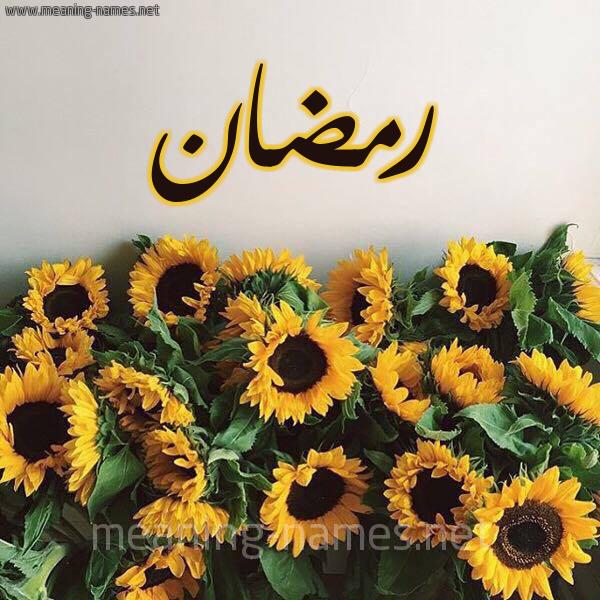 صورة اسم رمضان Rmdan شكل 17 صوره دوار الشمس للإسم بخط رقعة