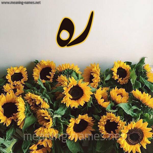 صورة اسم ره RH شكل 17 صوره دوار الشمس للإسم بخط رقعة