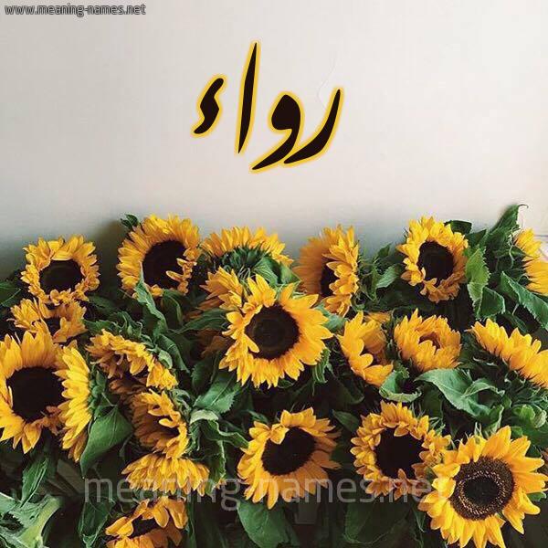 صورة اسم رواء Rwaa شكل 17 صوره دوار الشمس للإسم بخط رقعة