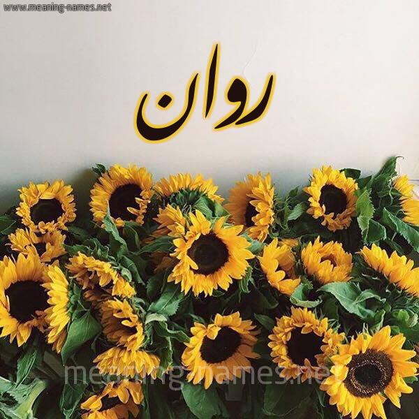 صورة اسم روان Rawan شكل 17 صوره دوار الشمس للإسم بخط رقعة