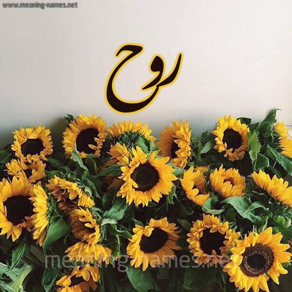 صورة اسم روح Rooh شكل 17 صوره دوار الشمس للإسم بخط رقعة