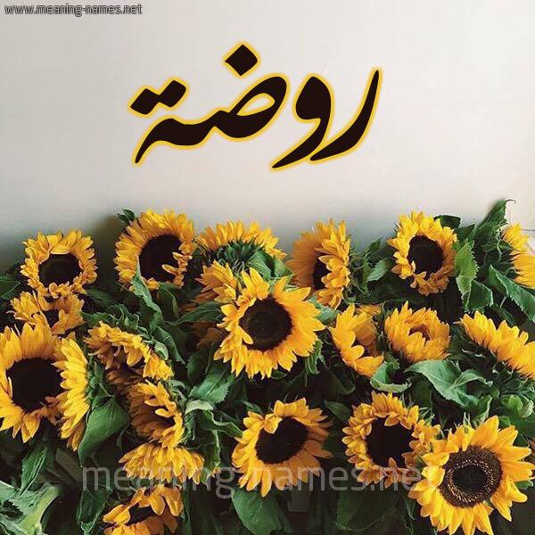 شكل 17 صوره دوار الشمس للإسم بخط رقعة صورة اسم روضة Rowda