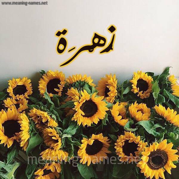 صورة اسم زُهْرَة Zohra شكل 17 صوره دوار الشمس للإسم بخط رقعة
