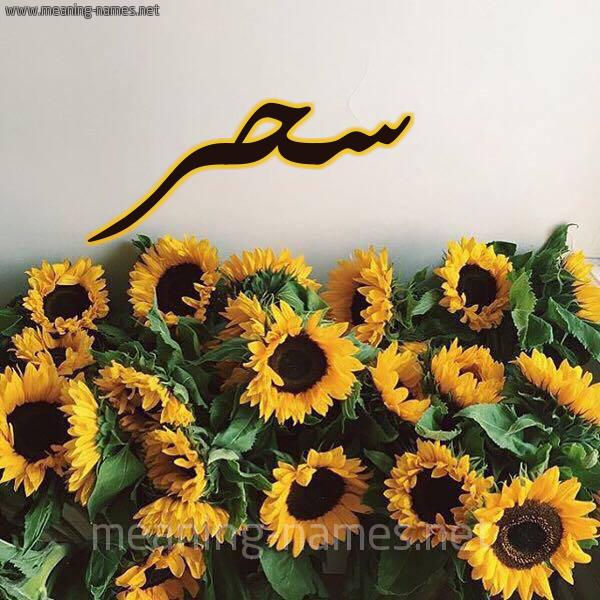 صورة اسم سحر Sahr شكل 17 صوره دوار الشمس للإسم بخط رقعة