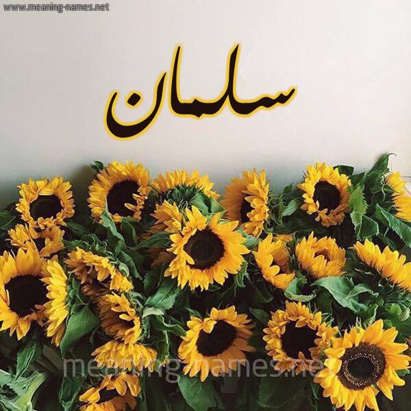 صورة اسم سلمان Salman شكل 17 صوره دوار الشمس للإسم بخط رقعة