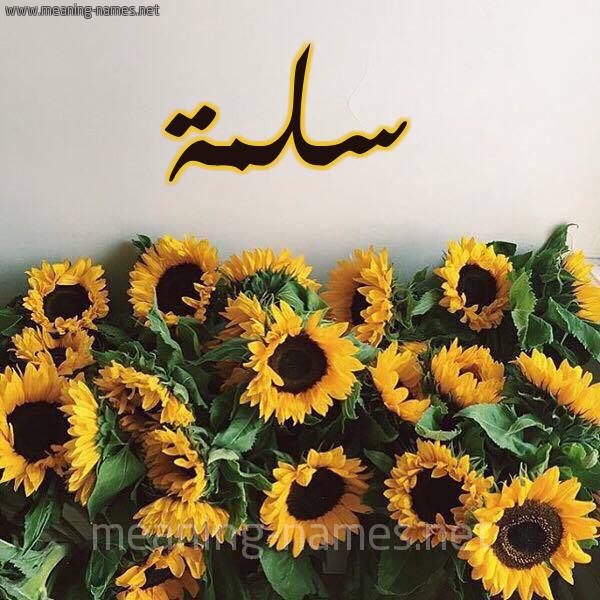 صورة اسم سلمة Slmh شكل 17 صوره دوار الشمس للإسم بخط رقعة