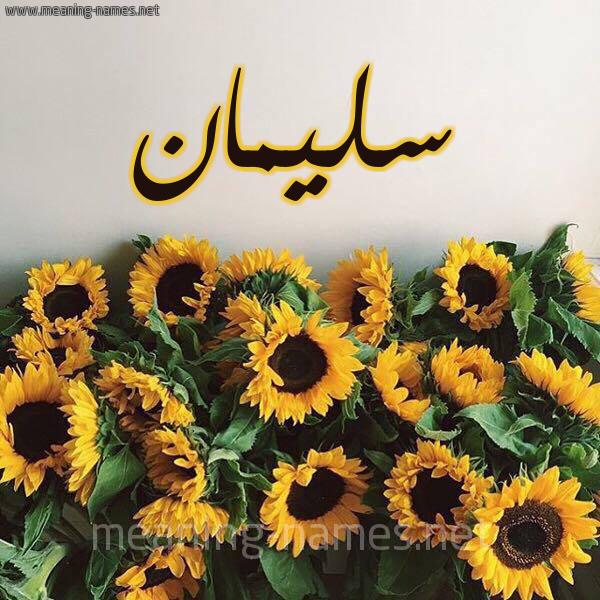 صورة اسم سليمان Sliman شكل 17 صوره دوار الشمس للإسم بخط رقعة