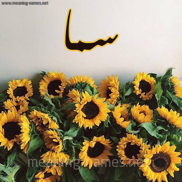 صورة اسم سما Sama شكل 17 صوره دوار الشمس للإسم بخط رقعة