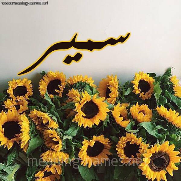 صورة اسم سمير Samir شكل 17 صوره دوار الشمس للإسم بخط رقعة