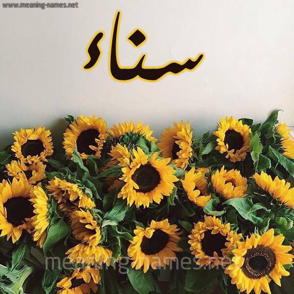 صورة اسم سناء Snaa شكل 17 صوره دوار الشمس للإسم بخط رقعة