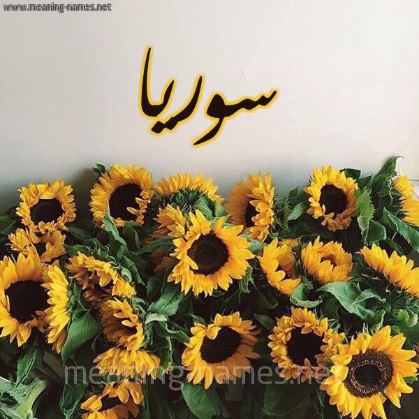 صورة اسم سوريا Syria شكل 17 صوره دوار الشمس للإسم بخط رقعة