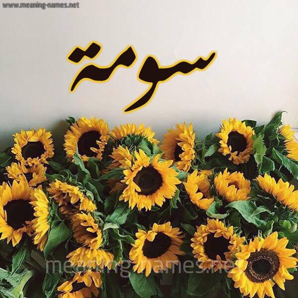 صورة اسم سومة Soma شكل 17 صوره دوار الشمس للإسم بخط رقعة