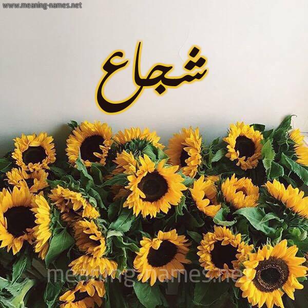 صورة اسم شجاع Shojaa شكل 17 صوره دوار الشمس للإسم بخط رقعة