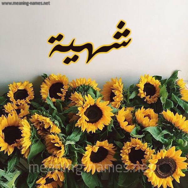 صورة اسم شهية Shhyh شكل 17 صوره دوار الشمس للإسم بخط رقعة