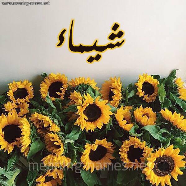 صورة اسم شيماء Shymaa شكل 17 صوره دوار الشمس للإسم بخط رقعة
