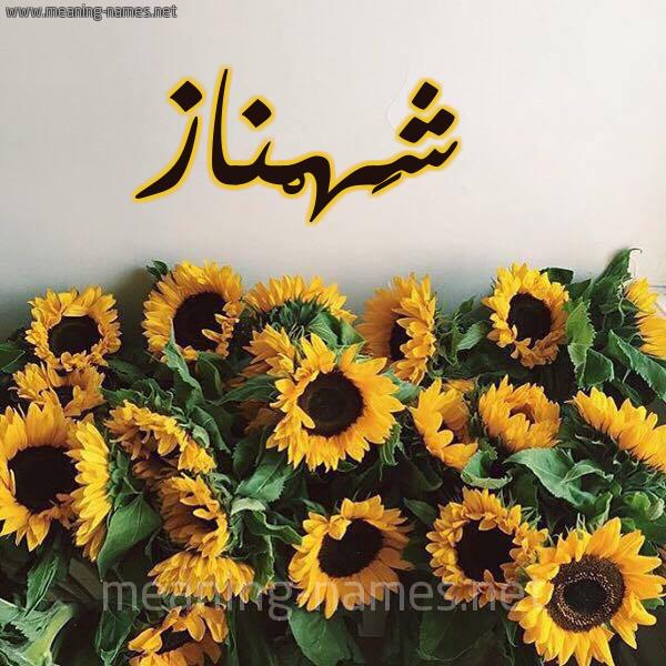 صورة اسم شَهْناز SHAHNAZ شكل 17 صوره دوار الشمس للإسم بخط رقعة