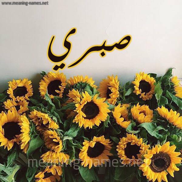 صورة اسم صبري Sabry شكل 17 صوره دوار الشمس للإسم بخط رقعة
